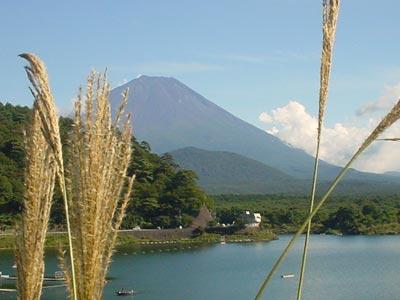 富士の高嶺に