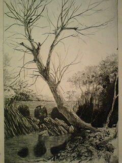 川面の樹と廃線煉瓦橋